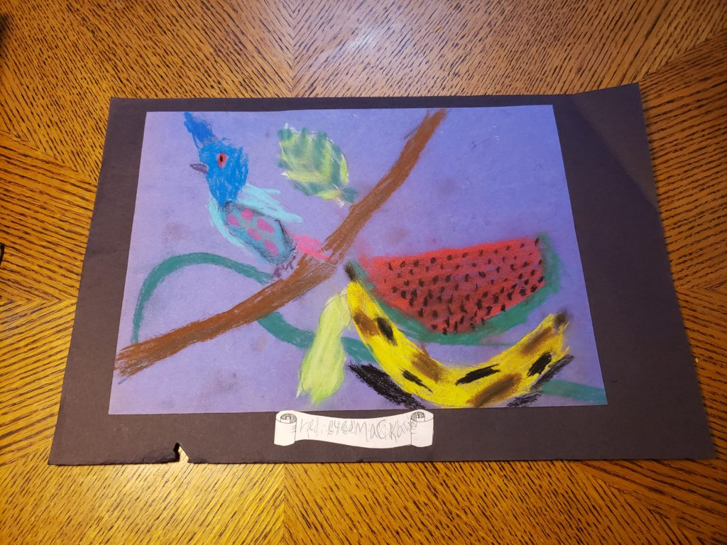 "A pastel drawing of fruit and a bird. A banana with brown spots lies in front of a slice of watermelon. A branch hangs diagonally above the fruit with a blue bird with red eyes and spots perched on it. A curling scroll below the picture reads ""red eyed macaw"""